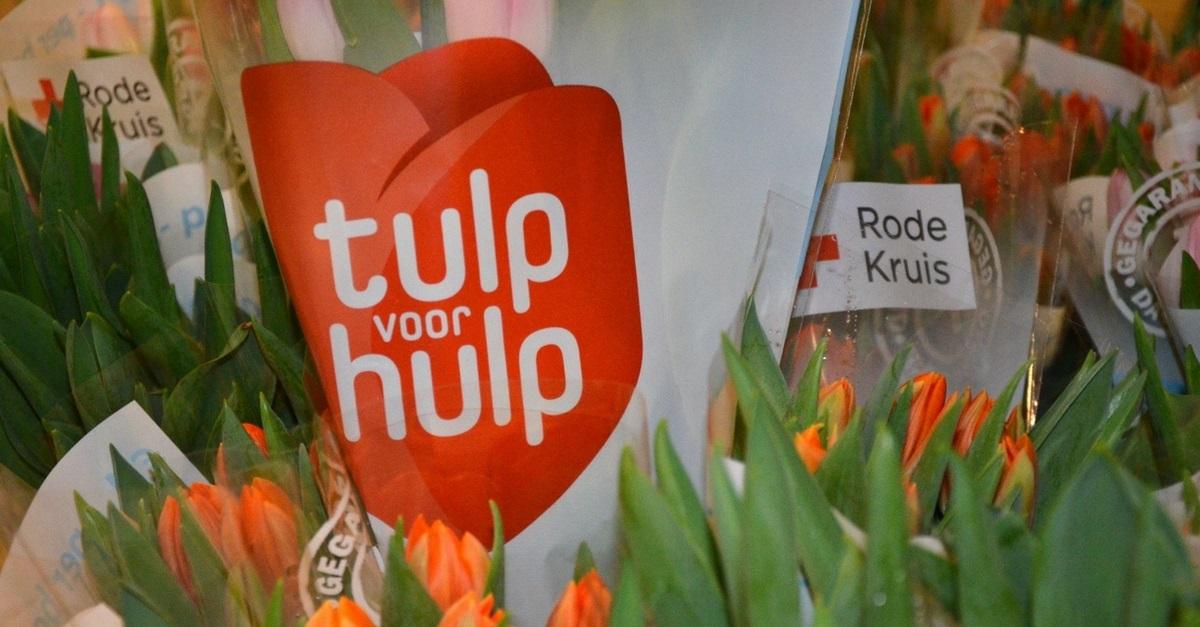 Tulp voor Hulp bij Albert Heijn